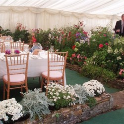 Flower bed in Marquee