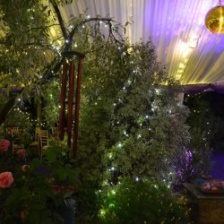 Gold mirror ball with spotlights in a clearspan party marquee